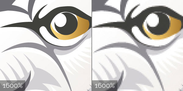 Comparison between vector and raster artwork at 1600%