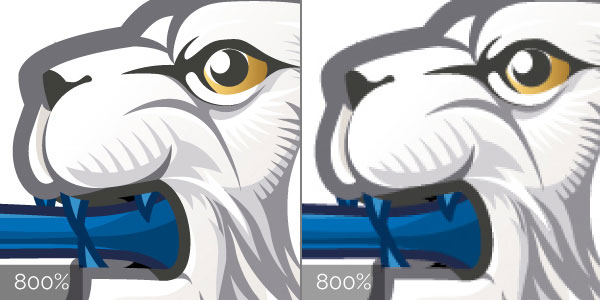 Comparison between vector and raster artwork at 800%